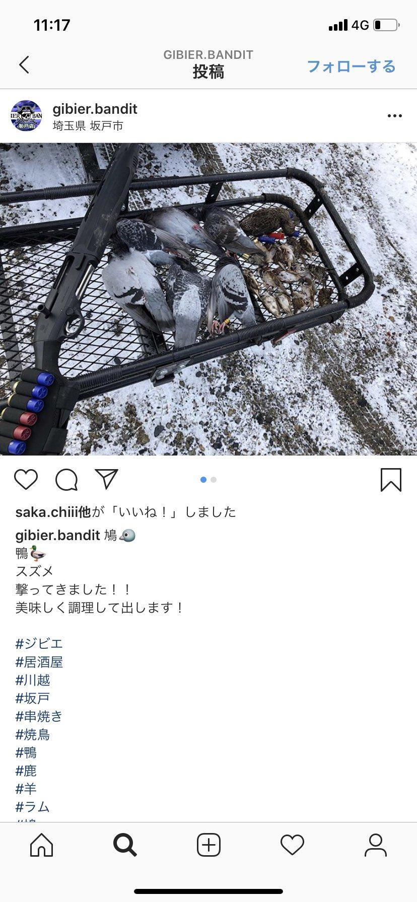 埼玉 ジビエ レース 鳩