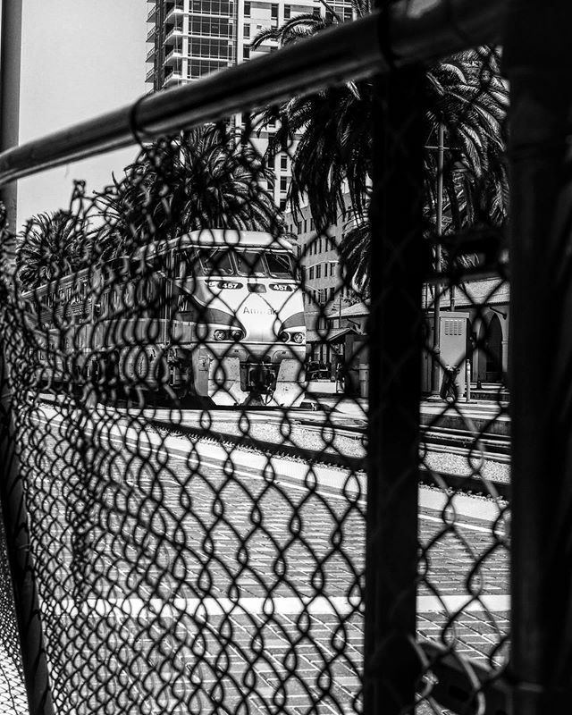 #larditti #visionbylarditti #photography ##photographer #photographie #Streetphotography #noir&blanc #black&white #blacknwhite #noiretblanc #bw_captures #BehindTheLens #photographerfocus  #all_shots #art #capture #exposure #capturabnw #streets_in_motion #bnw_dream #bnw_great…pic.twitter.com/1OIMyXzWek