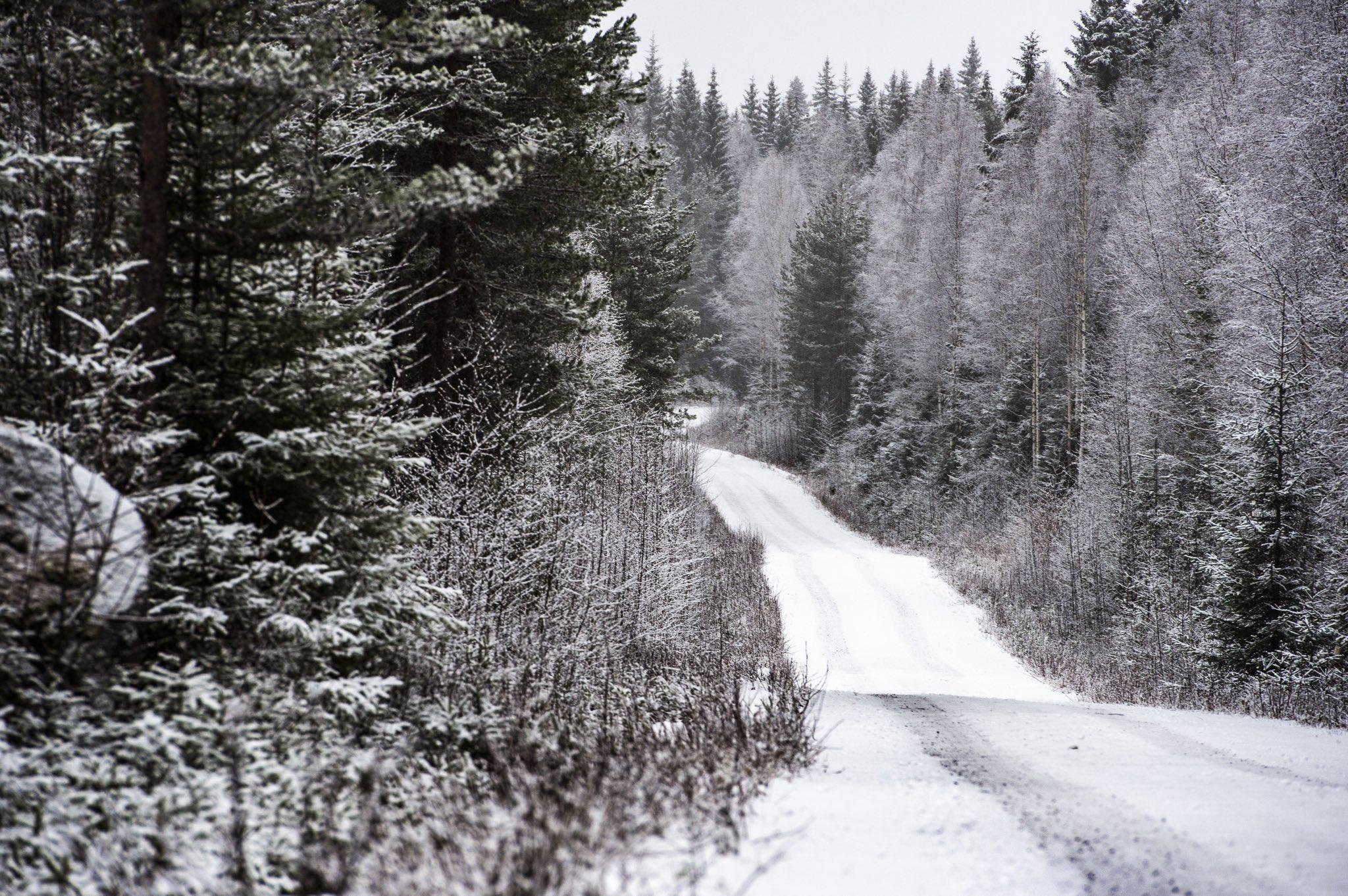 WRC: 68º Rallye Sweden [13-16 Febrero] - Página 2 EQkKK9TWkAAcCkP?format=jpg&name=4096x4096