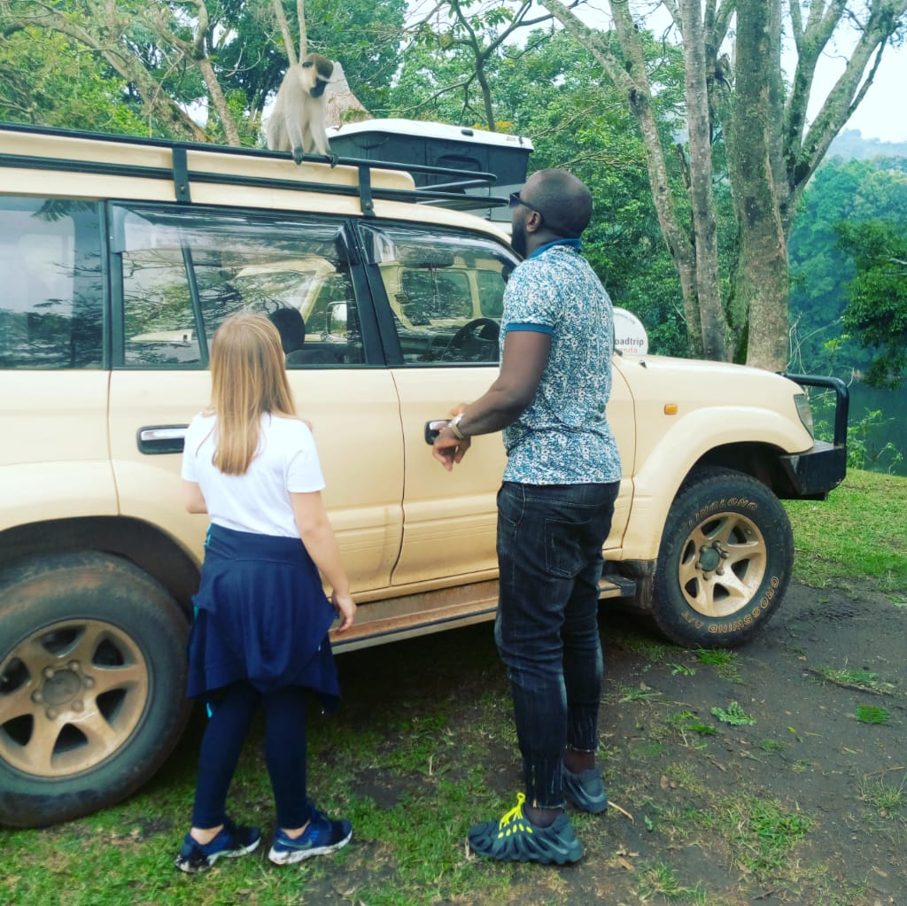 We organize all kinds of gorilla trekking, wildlife and birding safaris in Uganda. Our well customized packages are available for booking all year round  https://t.co/pfOzc75lxU #shortugandagorillasafaris #Ugandatours #shortugandatours #Ugandatour #mrfleettoursandtravel https://t.co/HdY2kSmbYY