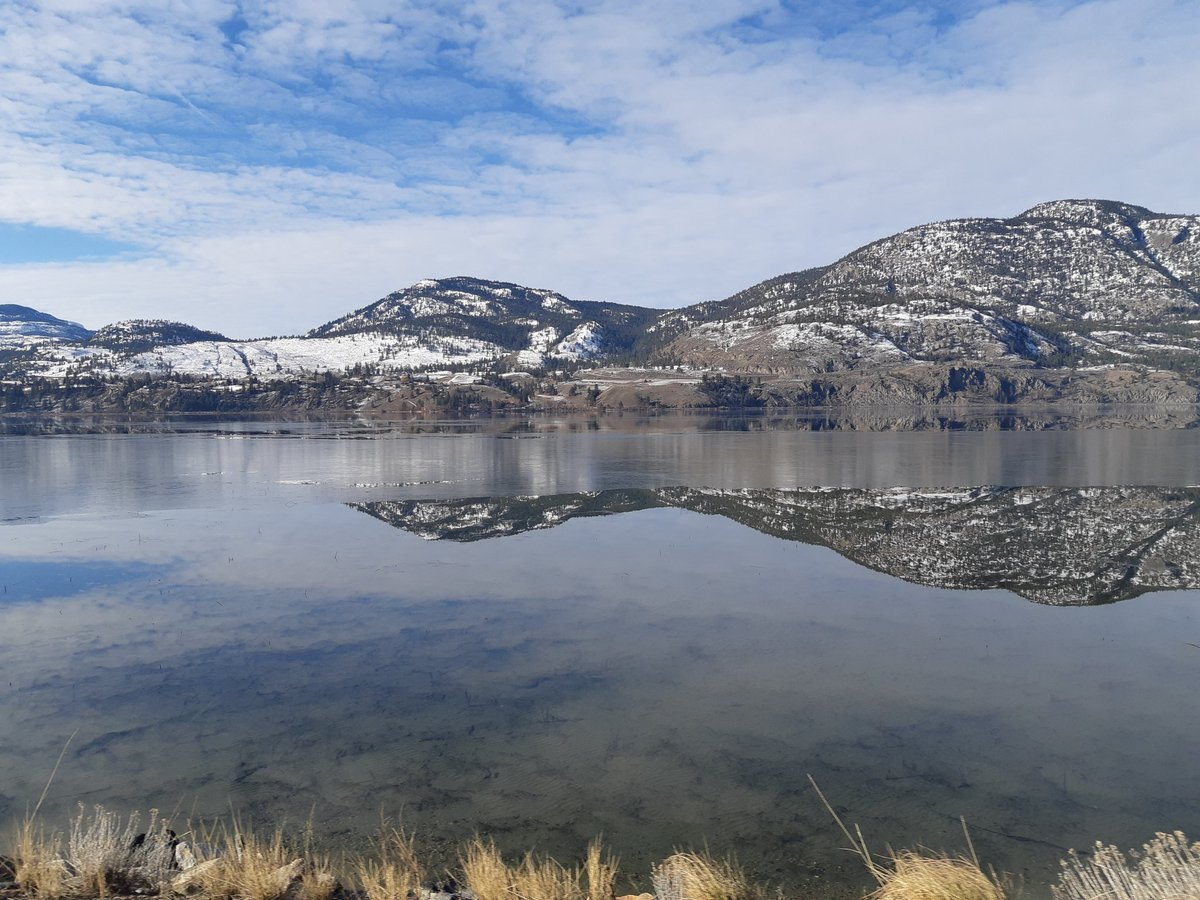 #SkahaLake sure looks pretty when it's all mirrory and calm! Shot from Lakeside Rd looking across towards #highway97 in #Penticton. @PQuinlanGlobal @GlobalOkanaganpic.twitter.com/jlP5jUXgtK