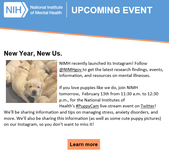 INBOX: the @NIH will be livestreaming puppies tomorrow at lunch