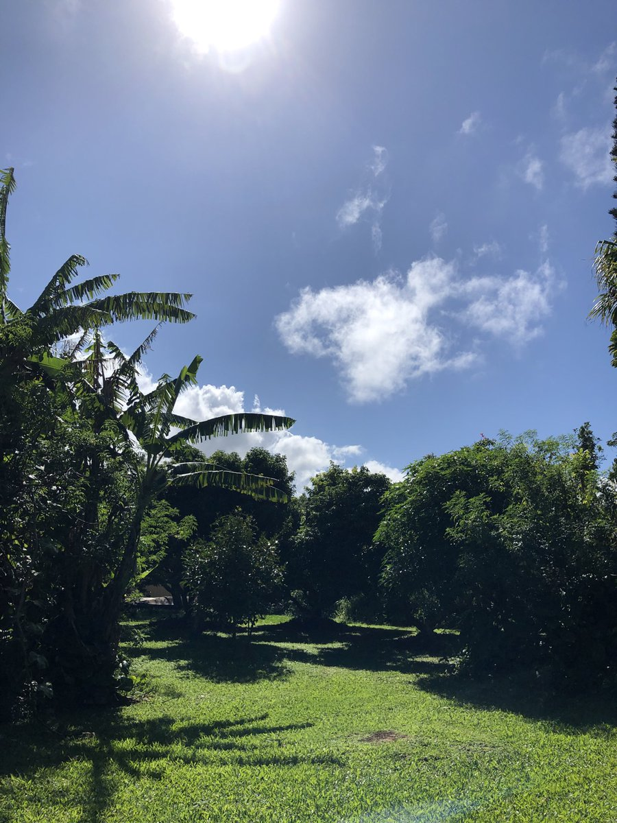test Twitter Media - Mostly clear and calm in haiku. #CMWeather #Maui #ConsciousMaui #MagicalMaui #Haiku #MauiNokaoi https://t.co/6V6LXYTXDX