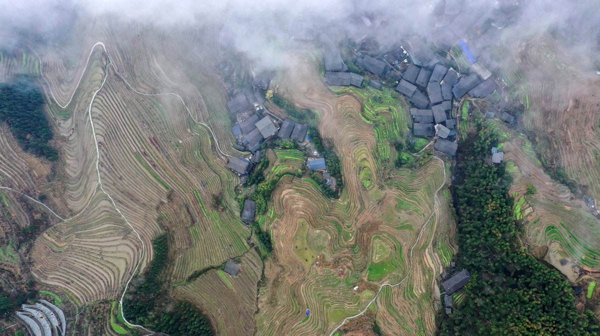 Usually packed with tourists, the terraced rice fields of Longji in south China's Guangxi Zhuang Autonomous Region quietly await spring planting.The region's scenic villages are temporarily closed to tourists due to the novel coronavirus outbreak