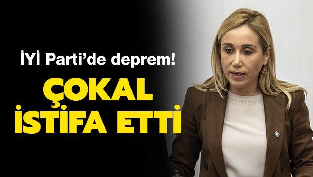 İYİ Parti'de büyük şok! Genel Başkan Yardımcısı Tuba Vural Çokal sert sözlerle istifa etti! ile ilgili görsel sonucu