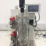 Image for the Tweet beginning: Our new bioreactor set up