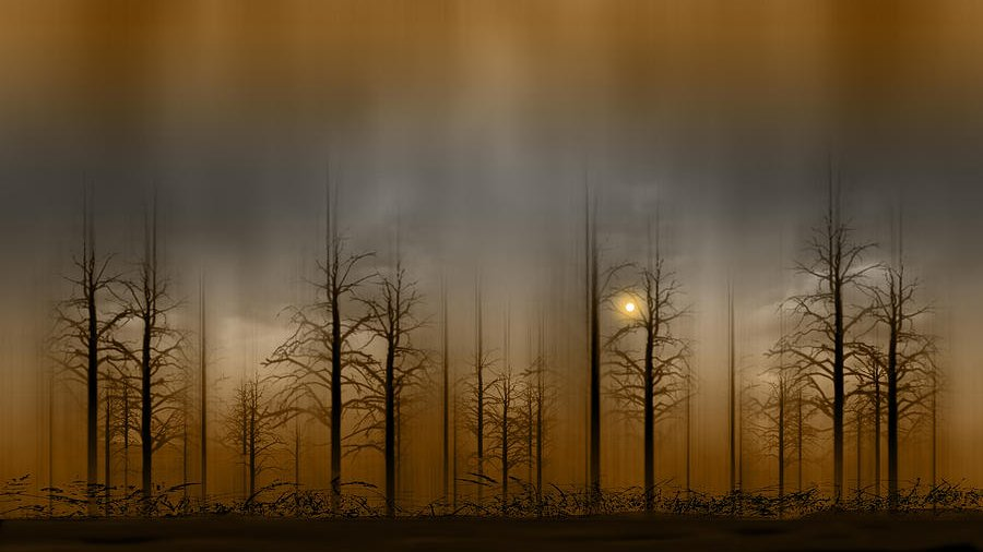 Peter Holme #photography #art