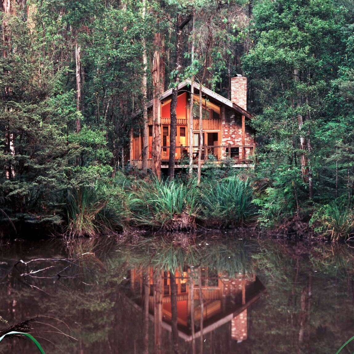 test Twitter Media - ❤️ Woodlands Rainforest Retreat, Yarra Valley ❤️ Lake Tyrrell, Grampians https://t.co/JJpSKw31CO