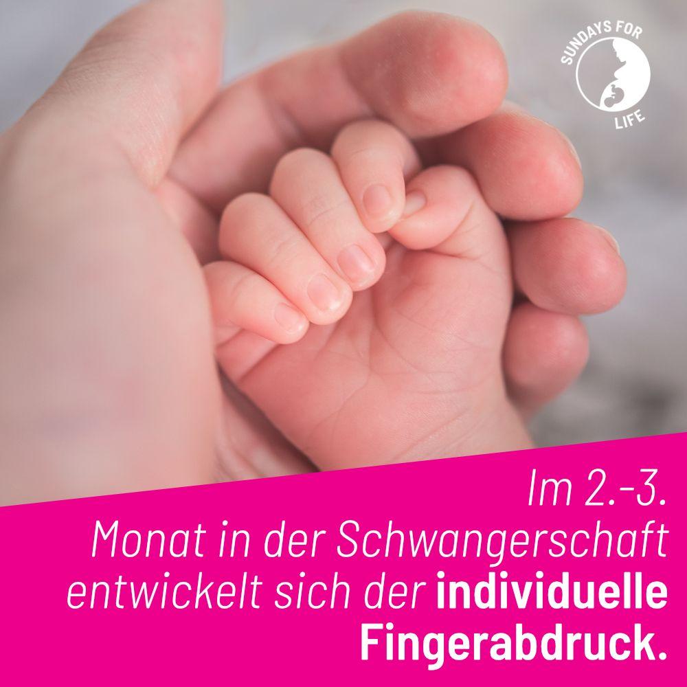 Aber einzigartig ist jedes Kind schon früher – von Anfang an!  #prolife #liebesiebeide #lifeislife #prochoice #baby #schwanger #schwanger2020 #abbruch #abtreibungistfrauenrecht #abtreibung #adoptionpic.twitter.com/mNansusIof