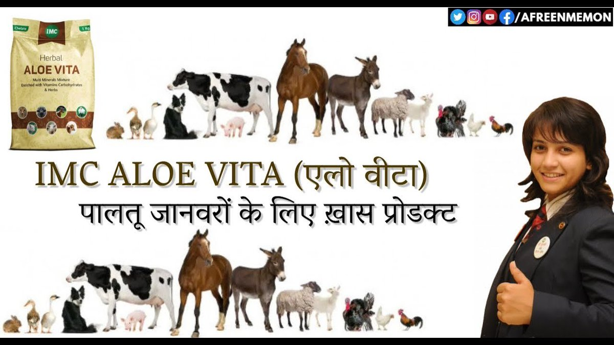 IMC ALOE VITA BENEFITS I कैसे काम करता है IMC का एलो वीटा जानवरों पर अभी देखिये इस वीडियो को  https://youtu.be/QoAAC6lOByo    #animal  #AloeVita  #imcbusiness