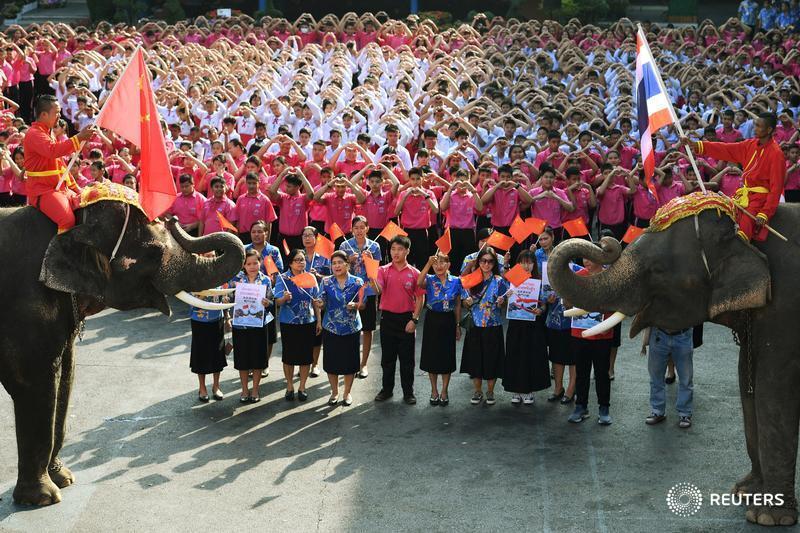 Big love: Thai elephants, students send Valentines to virus-hit China https://reut.rs/3byBpfI by @KuhakanJiraporn