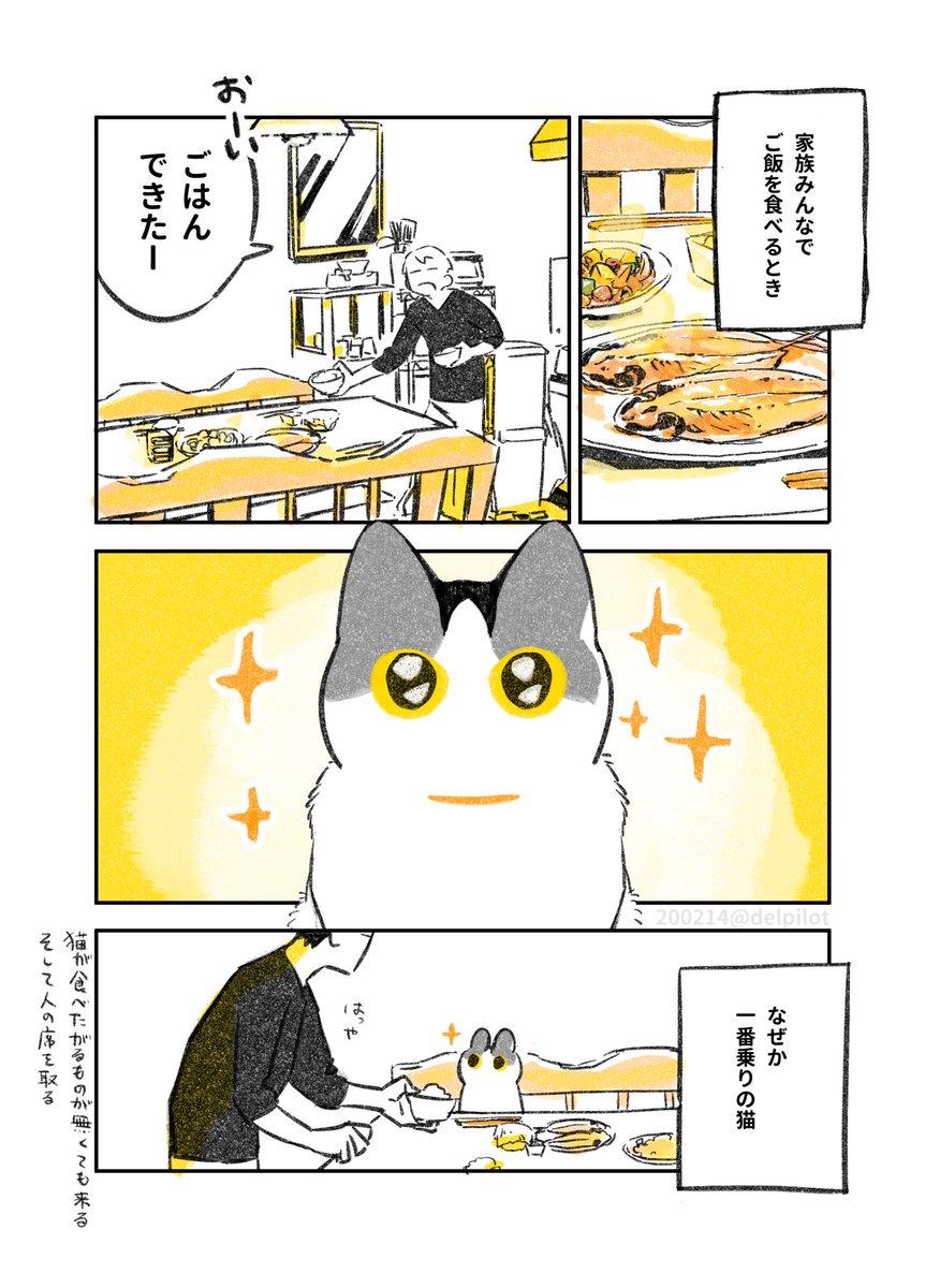 人がご飯食べてると見にくる猫といつだかの夕飯