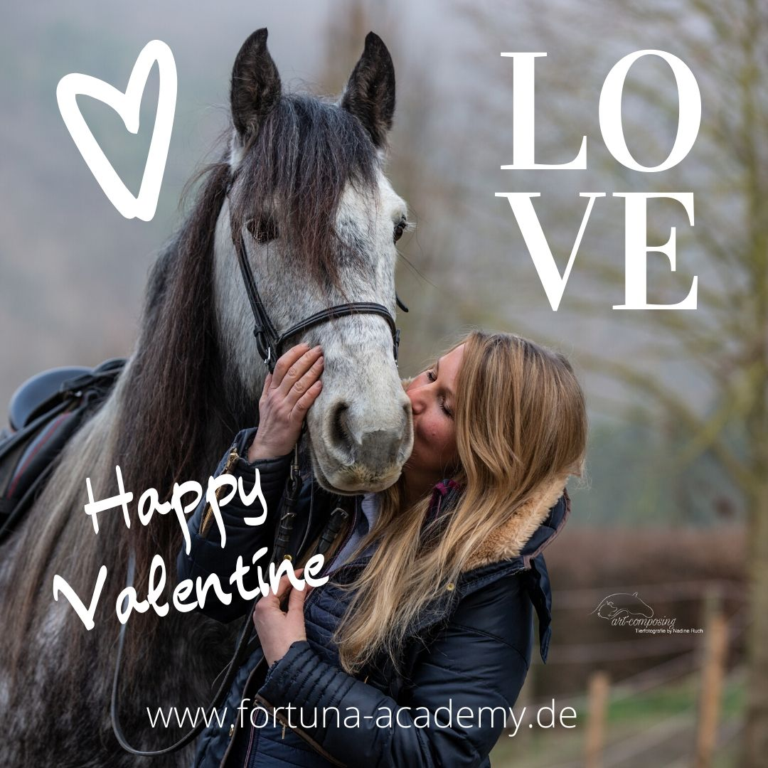 Happy Valentine#pferdeshooting #Valentinstag #Valentine2020 #valentines_day #ValentinePromises #ValentinesWithNobodypic.twitter.com/TVz94nUwcF