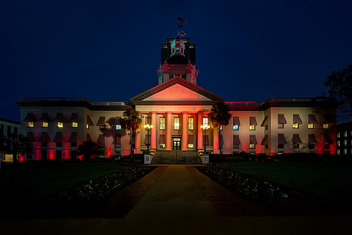 Our state and nation continue to mourn the innocent lives that were taken two years ago in a senseless act of violence at @MSDHighSchool. In memory of those lives lost, the Florida State Capitol has been lit all week in the MSD school colors. <br>http://pic.twitter.com/9eRK8503b3