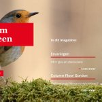 Image for the Tweet beginning: Het nieuwe online magazine #Duurzaam
