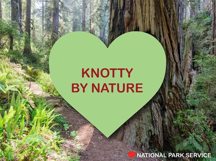 Happy #ValentinesDay! ❤️- Your Parks