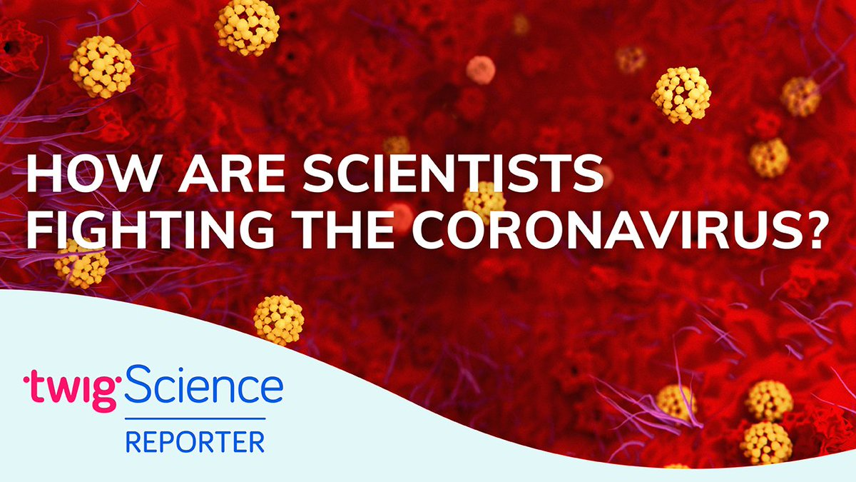 Our partners @imperialcollege not only promote excellence in #STEMeducation but are also developing a coronavirus vaccine! https://www.youtube.com/watch?v=FydsiiQ7rSE … Learn more with #TwigScienceReporter.pic.twitter.com/RpAsEoh79b