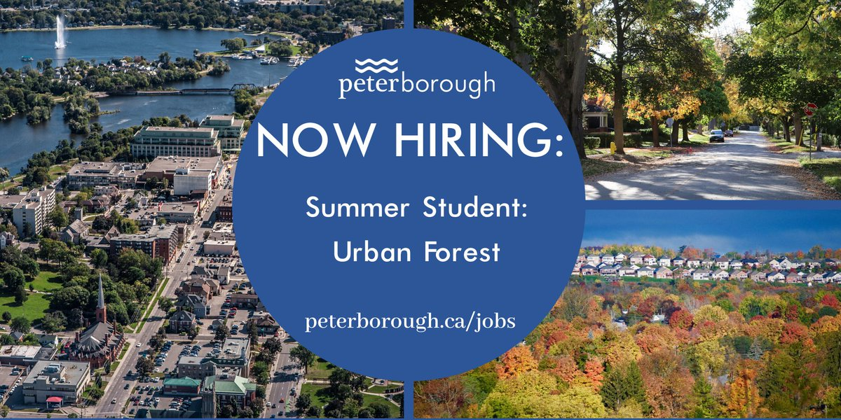 Forestry students, the city of Peterborough is looking to hire a Summer Student in Urban Forestry! You have until Friday, February 28, 2020, to apply!  https://t.co/iGR6AdeYwv