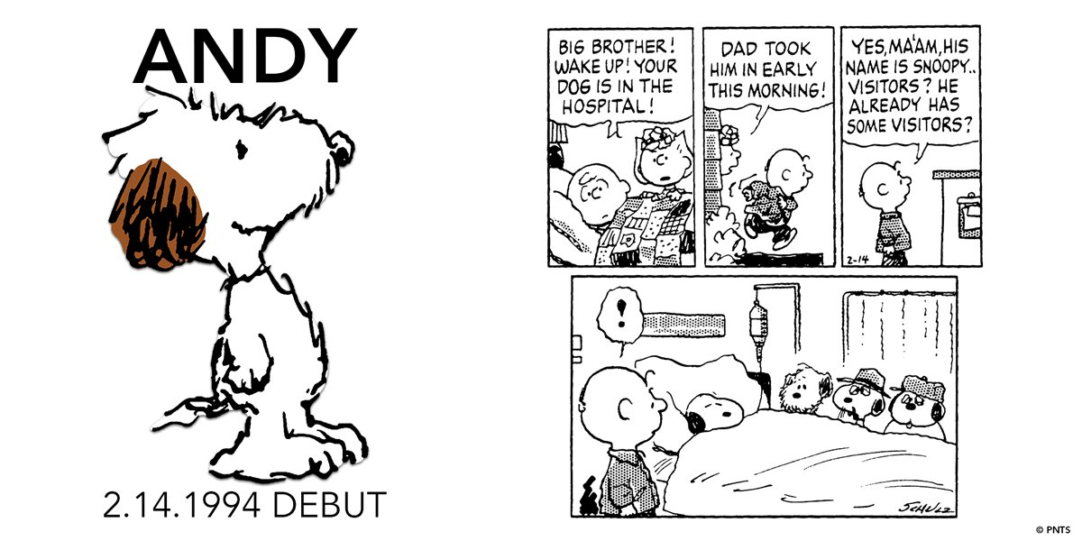 Its #AndyDay! Andy made his debut 26 years ago today in a Peanuts strip published on February 14, 1994. One of Snoopy's brothers, he refers to himself as a simple farm dog, is known for his shaggy appearance, and is never far from Olaf's side. 📸 Schulz with Andy, 1992.