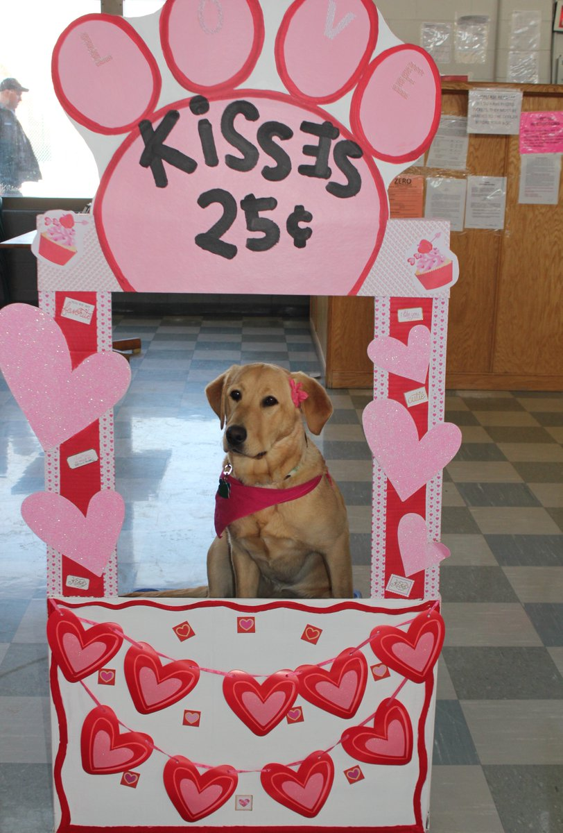 Image result for canine pics kissing booth