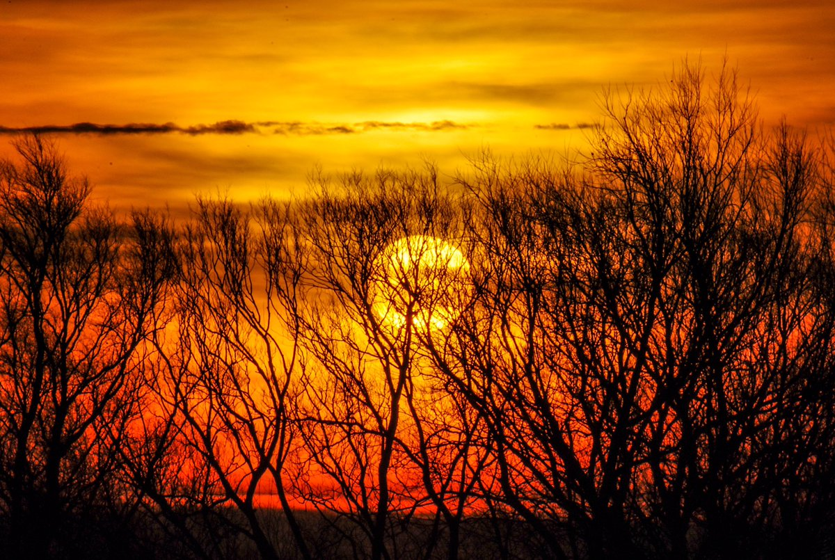 Valentines Day morning was a wonderful treat  The sky was multicoloured and sunrise was far from bleak. Ely Riverside. #sunrise #SaintValentin #Valentainsday #trees @SpottedInEly @metoffice @WildlifeTrusts @StormHour @BBCWthrWatchers @itvanglia @FascinatingFens @ElyIslandPie<br>http://pic.twitter.com/LeotADbhqV