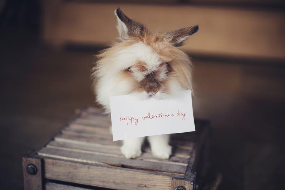 Happy Valentine's Day from me to you! #LaserHairRemoval #SkinTips #SkinGoals #SkinHealth #SkinTreatment #SkinCareLover #SkinCareRegime #SkinRejuvenation #HealthySkinCare #TattooRemoval #SkinTightening #HydraFacial #AntiAgingSkinCare #Burnaby #Coquitlam #ILoveSkinCarepic.twitter.com/jCAG8iSF5h