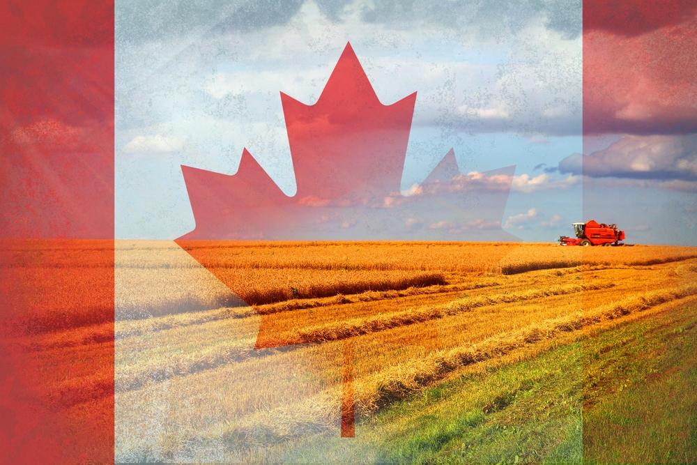Nos #exportations de produits agroalimentaires et de poissons et fruits de mer atteignent des marchés partout dans le 🌍. Ce weekend, @AAC_Canada se joint à 100 000 visiteurs du monde entier au salon #Gulfood2020 pour présenter ce que le 🇨🇦 a à offrir en 2020 et au-delà!