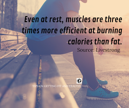 Exercise Facts!  #fitness  #Healthy  #lifestyle   #FitnessTips  #motivationaltips  #health  #healthymindandbody  #fit  #workout  #diet  #gym  #fitspo  #training  #gymlife   #TipsforGettingFitandHealthy