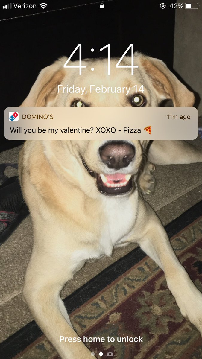 Not now @dominos