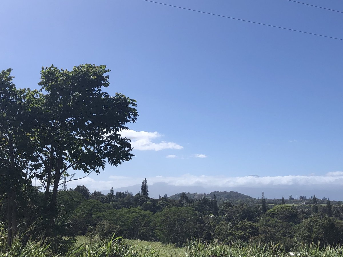 test Twitter Media - Mostly clear and windy on the North Shore. #CMWeather #Maui #Mauinokaoi #NorthShore #AlohaFriday #MagicalMaui https://t.co/PQA3jlIdWF