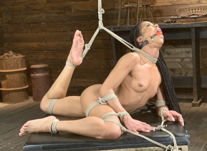 2 pic. Spent Valentine's Day tying up and torturing @thekiranoir for #Hogited @kinkdotcom https://t.