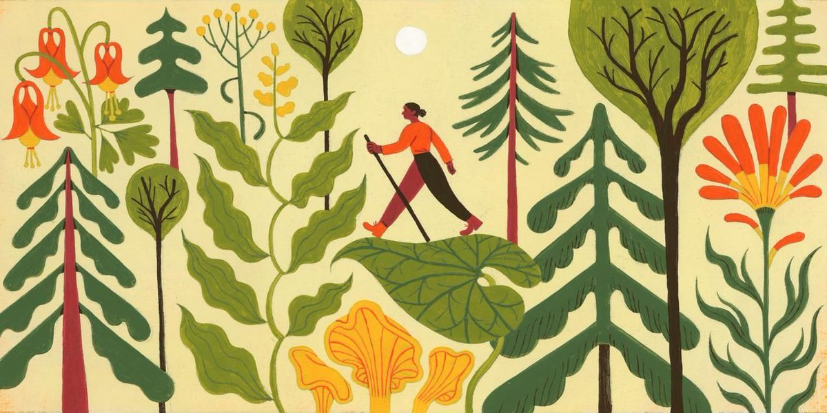 Forest bathing is fashion's way to find calm: bit.ly/376xiUE