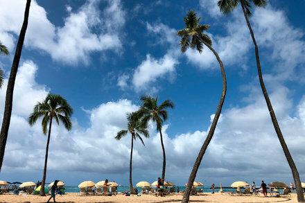 coronavirus-patient-fell-ill-while-on-vacation-in-hawaii Photo