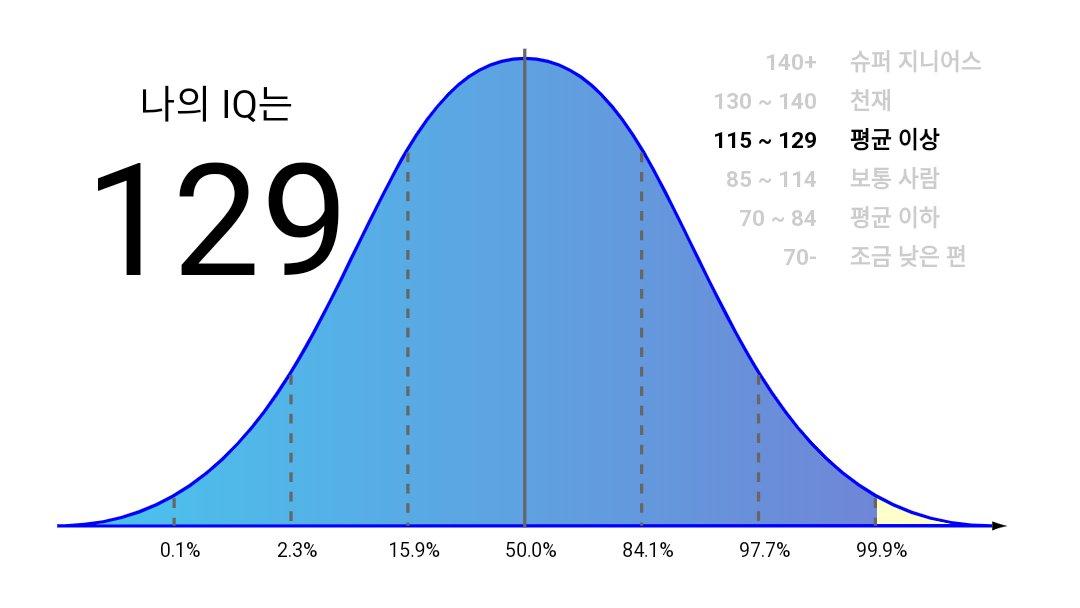 나의 IQ 지수 사진