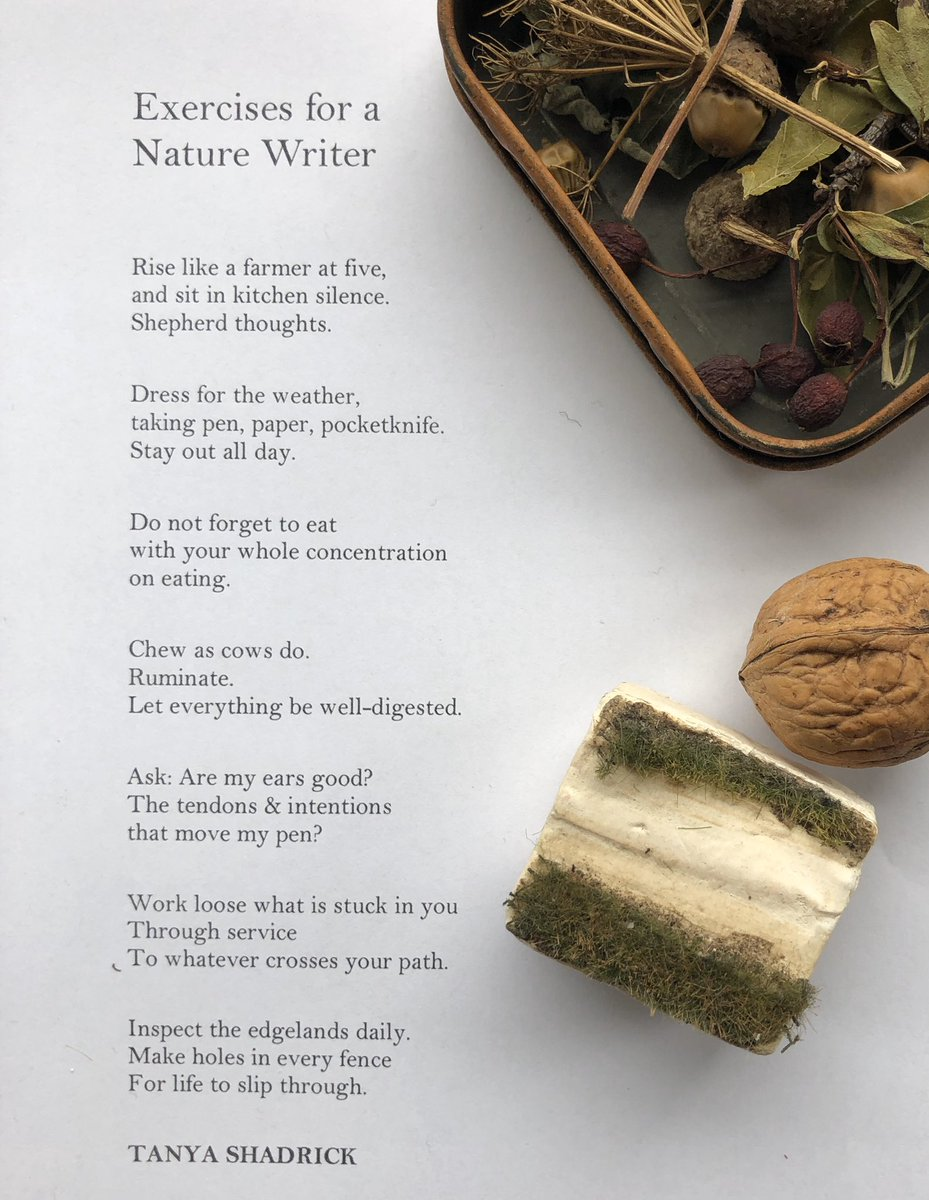 Exercises for a Nature Writer  Chronic pain has often kept me house & town-bound. I still make nature notes, but my finest times are when I can (for a while) rise early, range widely. This written from that - & as a keepsafe for times when my world slows & shrinks again...
