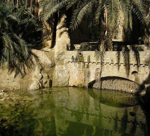 #Africa #tunez #chebika #viajes #Travel #travelblog #viajerosporelmundo #photo #photography #foto #fotografia #amorporviajar #blogdeviajes #hermosasvistas #lovetravel #travelblogger #viajandovoy #viajaresvivir #lovetravel #love  #travelphotography