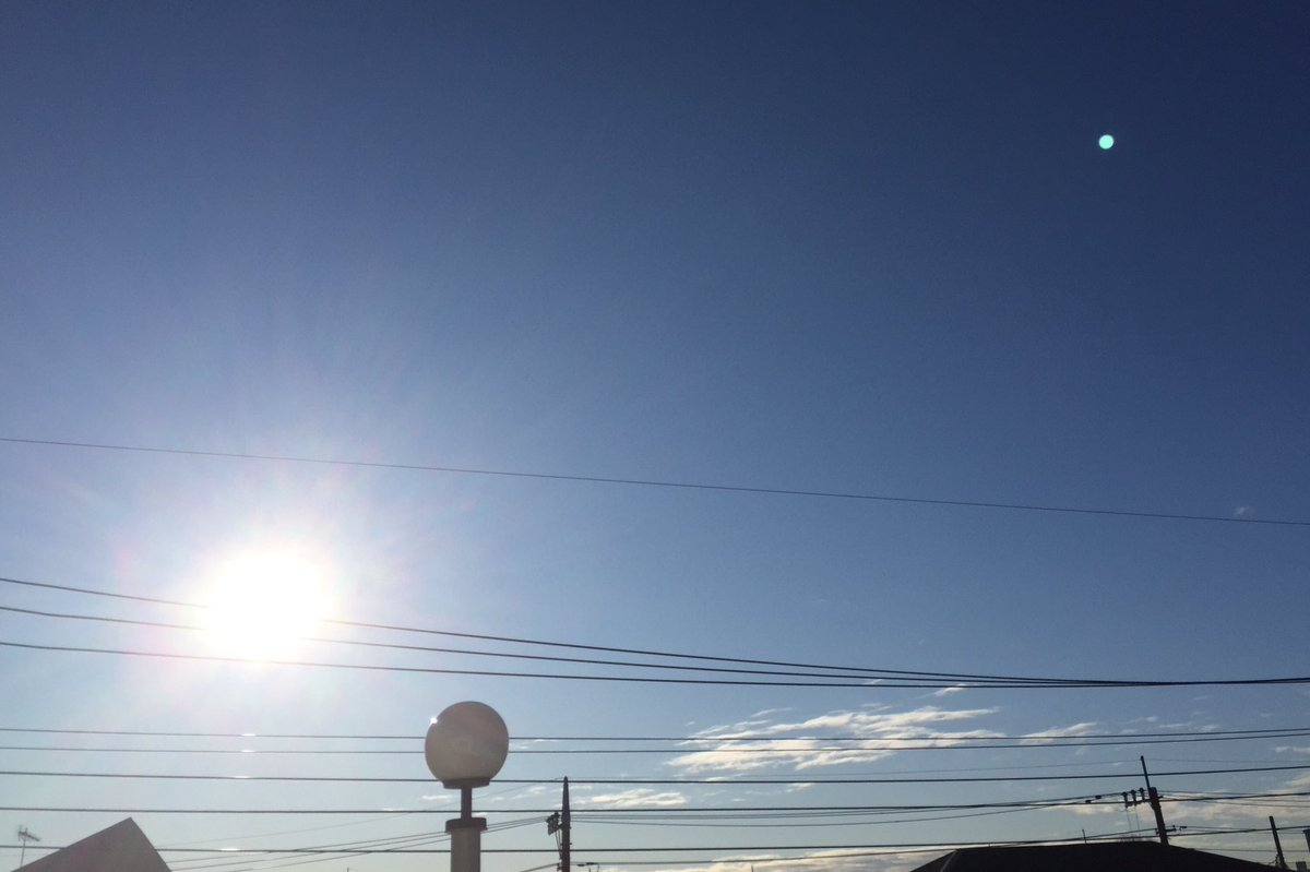 Today  ☀️☀️☀️FRI☀️☀️☀️  気温 3℃       湿度 57%  #イマソラ #plants #now #sky #sun #clouds # blue  空気は冷たいけど太陽の温もりたっぷりな朝🌞✨  #風邪予防 #ウイルス対策 😷🧴🧴🧴🧴🧴🧴🧴🧴🤲 少しずつ回復⤴️ どなた様もご自愛ください🙏  have a great day✨✨✨