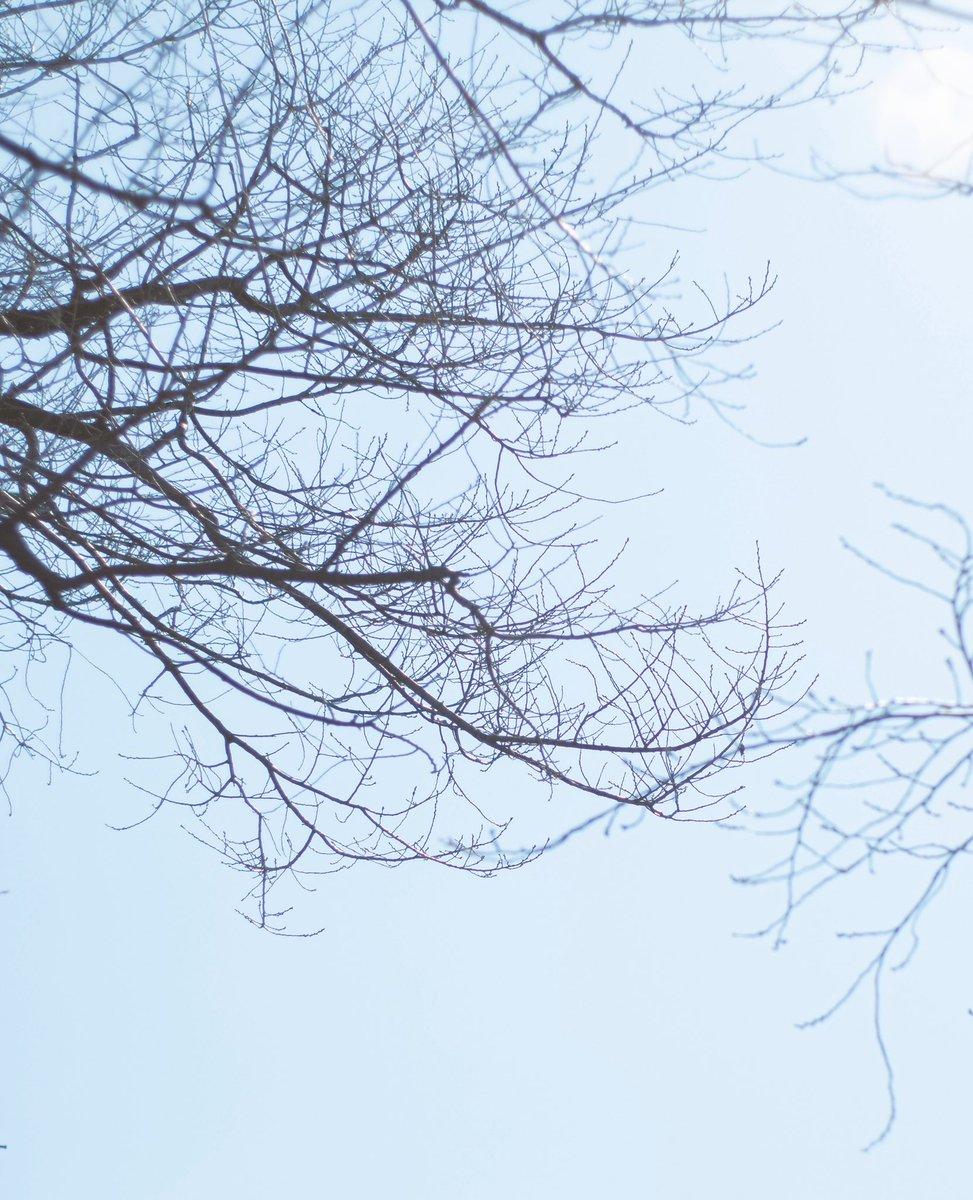 . . . #ファインダー越しの私の世界 #ほんわかな日常 #photographer #Photo