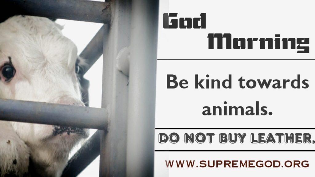 #GodMorningFridayAll living is equal to Allah, killing is a sin✍️Saint Rampal Ji Maharaj @aajtak @saomd_gameinfo