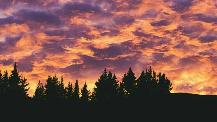 💖El mejor atardecer no existe...💭 🍃💫Llénate de pura energía positiva, olvídate de tu rutina, vive un momento de relajación en la naturaleza...🌳🌾 . #happy #love #lovers #summer #pic #photo #new #art #artist #good #GoodVibes #sky #sunset #girls #styles #nature