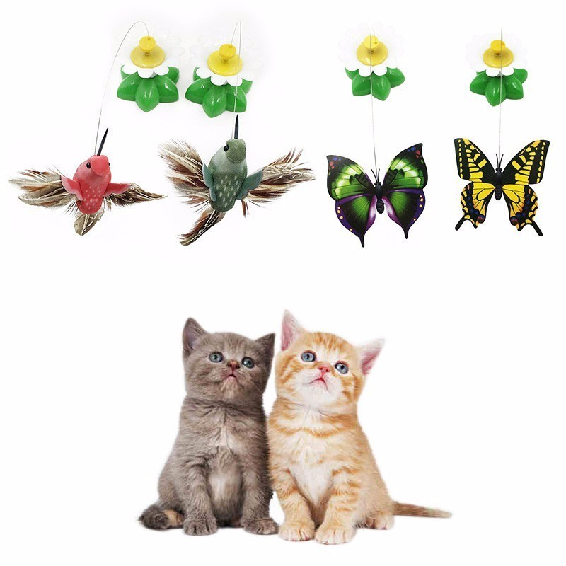 Electric Rotating 360 Pet Cat Toys For Cats Toy Colorful Butterfly Bird Seat Scratch Funny Pet Toys For Cat Kitten intelligence https://petshop.thebestpicks.website/product/electric-rotating-360-pet-cat-toys-for-cats-toy-colorful-butterfly-bird-seat-scratch-funny-pet-toys-for-cat-kitten-intelligence/ …pic.twitter.com/cWXLHd3cXO