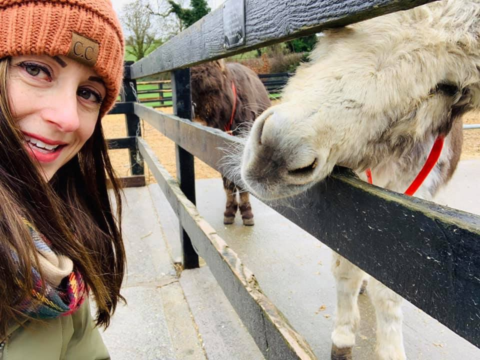 A8: Definitely the @donkeysanct. My mom's not an animal-lover and she said it was one of her best memories of the trip. #Limerick has a wonderful open market and a great downtown shopping area. The Saturday we were there, it was bustling! #WeekendWanderlust <br>http://pic.twitter.com/xEbmmHN5c0