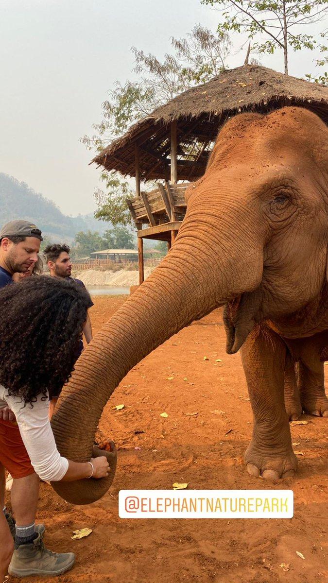 INSTAGRAM PHOTO: @JamesRoday and @christinamoses feeding the elephants at @ElephantNatureP