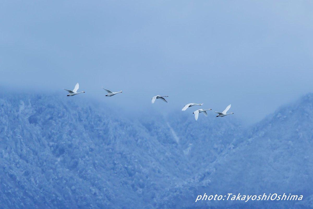 写真展もあと2日。 頑張ります。 #安曇野 #写真展 #山岳写真 #山岳風景 #日本の山 https://t.co/QRPJyuu2UB