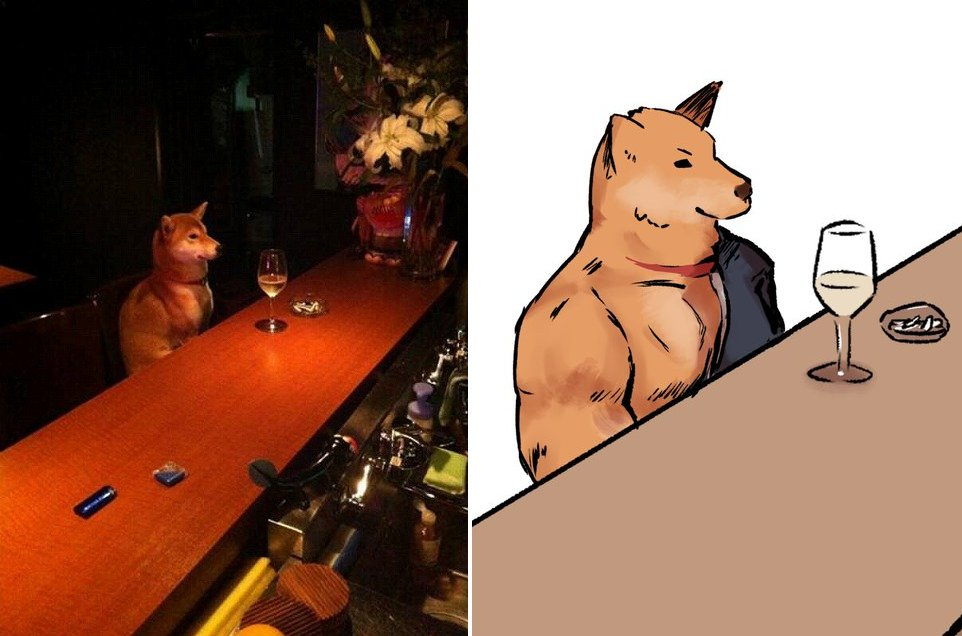 Dog Sits Alone at Bar😁 Creditt:@mi_zu_to_ra #dog #funny #amazing