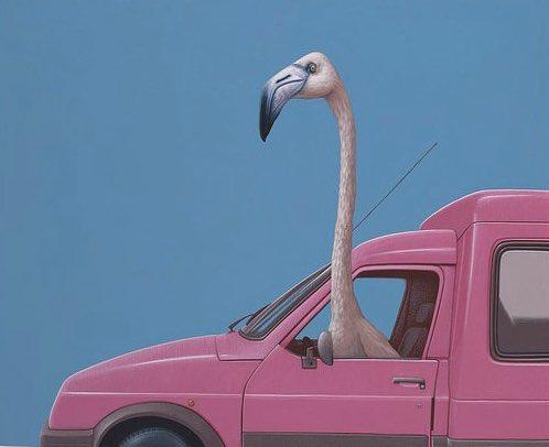 @HeyLaurenSummer #Happy Pink Flamingo Day...Get Better...💕
