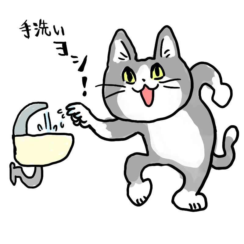 猫なので…