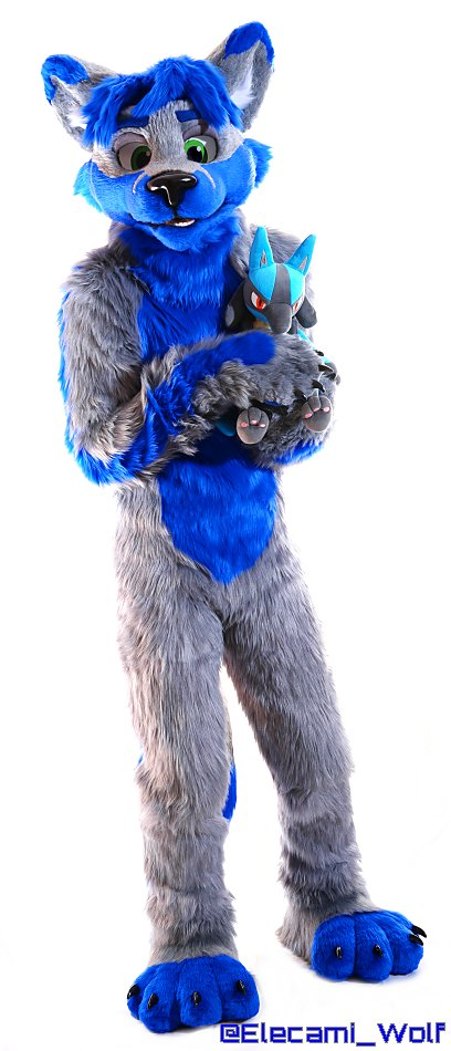 RT @Elecami_Wolf: #PokemonDay !! Lucario is the best!! #FursuitFriday https://t.co/qDzdRPsW77