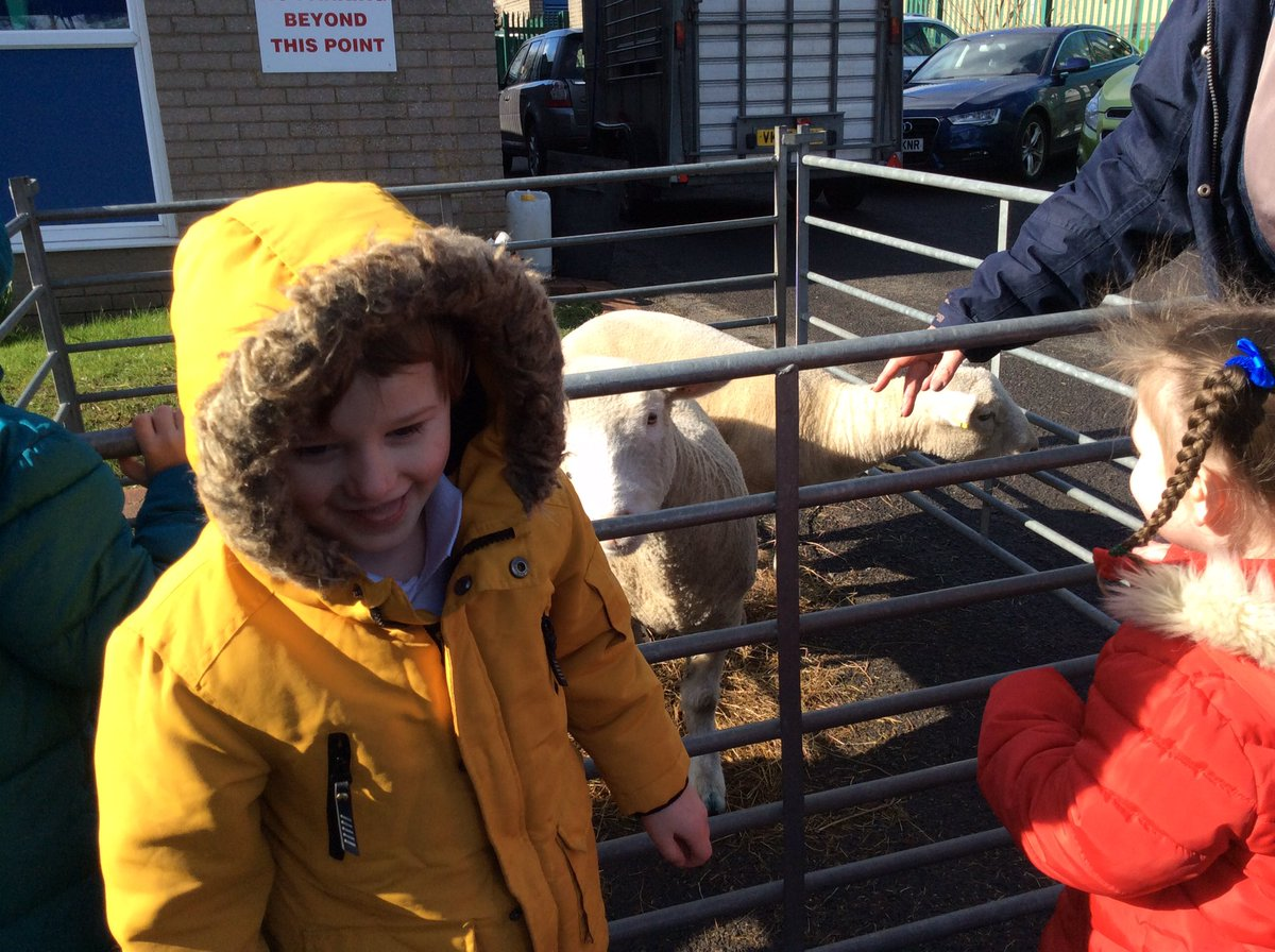 Thank you to Bowland Farm and Farmer Dave, everyone loved visiting with the farm animals yesterday. pic.twitter.com/qrby0SvCyA