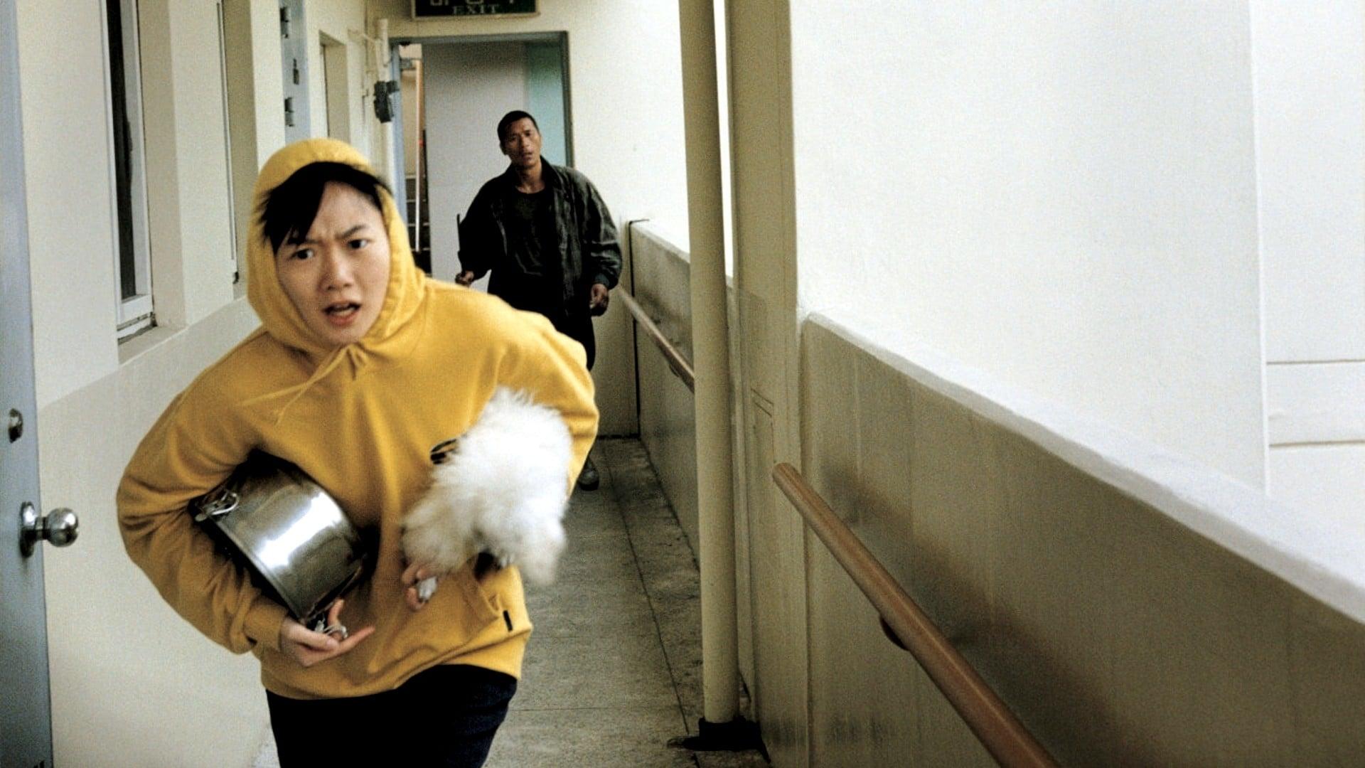 Perro ladrador, poco mordedor (2000)